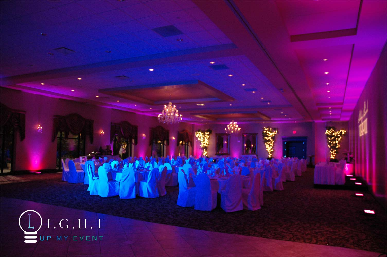 Michigan Uplighting Pinspots Table Lighting Ceiling